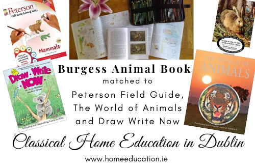 Burgess Animal Book matched to Peterson Field Guide, The World of Animals and Draw Write Now Cover Image