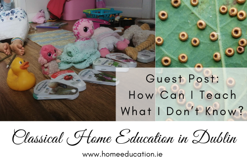 guest-post-HomeEducation.ie.HowCanITeach-can-i-teach-what-i-dont-know